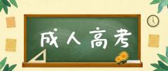 函授大专可以考小学教师资格证吗