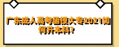 广东成人高考函授大专2021如何升本科?