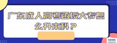 广东成人高考函授大专怎么升本科?